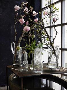 Tage Andersen Thejoyofplants.co.uk