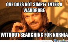 My brothers and I searched my wardrobe a few times a week for years. Always felt disapointed when I felt wood instead of pine needles.