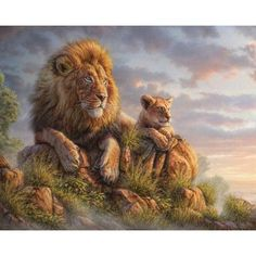 """Regal and wise. Wildlife painter Phil Jaeger captures the beauty and majesty of these lifelike lions in this breathtaking animal painting decal, Lion Pride. Greyish blue clouds roll across an eventide sky as a father lion gazes across the South African landscape, while his cub rests peacefully by his side on the Kopje in this stunning animal art painting decal. Ideal for any adventurous spirit or animal lover, this wildlife painting decal is available in 4 sizes: S-14.9""""w x 11.9""""h; M-18.7""""w…"""