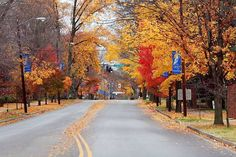 21 Things You Need To Know About Murfreesboro Before You Move There | Murfreesboro, TN!