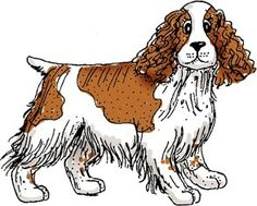 english springer spaniel coloring pages - photo#39