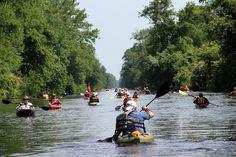 15 Gorgeous State Parks In North Carolina To Explore This Summer Camping In North Carolina, North Carolina Homes, Kayak Camping, Canoe And Kayak, Kayaking Trips, Camping Hammock, Southern Oregon Coast, Wrightsville Beach, United States Travel