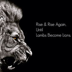 When you fall, as no doubt you will (don't worry, we all do at some point) rise and rise again.  Lambs only become Lions when they fight through it, struggle through it, and keep on going at it; the strength isn't just in the struggle, it's also in the will to struggle even when all seems lost.