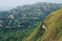 Se estima que, en gran medida, el fen�meno de calentamiento de la atm�sfera global se debe a la deforestaci�n