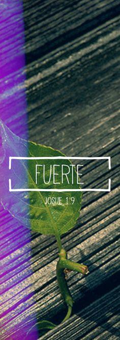 Josué 1:9 Yo te pido que seas fuerte y valiente, que no te desanimes ni tengas miedo, porque yo soy tu Dios, y te ayudaré por dondequiera que vayas.