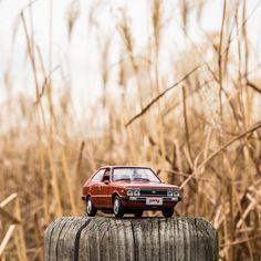 I love to watch reeds trembling in winter sunshine - 겨울 햇살에 흔들리는 갈대🌾 - #shaking #reeds #beautiful #winter #sunshine #loveit #park #travel #driveoff #car #carsinstagram #diecast #PONY #Hyundai