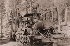 A steam traction engine being used for logging in the Sierras in 1910. Steam power revolutionized logging when it arrived in the form of these tractors. Until then heavy logs could only be floated down rivers or hauled out of forests using oxen teams. This was slow and expensive. Steam traction engines allowed lumbering to be accomplished far from rivers and without the need for herds of livestock. A single engine could haul many tons of lumber to mills or train yards. Lumber prices…