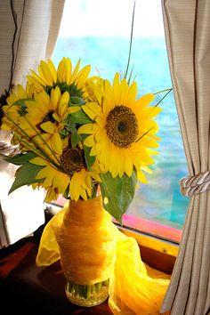 Brasilian sunflowers