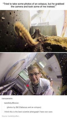 This is one of the reasons why being a scientist is awesome.