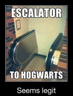 Escalators at Hogwarts memes can't stop laughing so true humor so funny Escalator FAIL Harry Potter World, Harry Potter Jokes, Harry Potter Fandom, Harry Potter Houses Traits, Memes Humor, Funny Memes, Hilarious, Funny Ads, Fun Funny