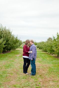 An Apple Orchard Engagement at Lynd Fruit Farm Ohio Photography