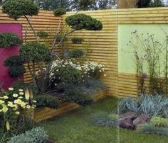 Petits jardins : Afficher la couleur - -Balcon/Terrasse/petit jardin