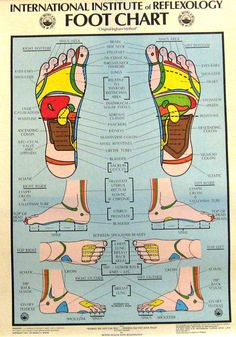 Vintage Reflexology Foot Chart Graphics Medical by outofdoha2010, $48.00
