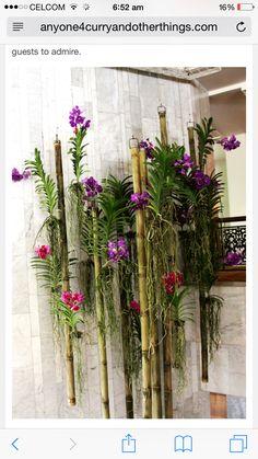 Mandarin Oriental Bangkok Hotel by floral genius Khun Ken Vanda Orchids, Orchids Garden, Purple Orchids, Hanging Orchid, Orchid Planters, Orchid House, Orquideas Cymbidium, Deco Nature, Growing Orchids