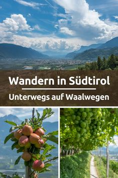 Hiking in South Tyrol on the Waalwegen # SüdtirolWandern . - Hiking in South Tyrol on the Waalwegen # South Tyrol hiking vacation h - Europe Travel Tips, Europe Destinations, Travel Hacks, Camping And Hiking, Camping Hacks, Travel Pictures, Travel Photos, Montenegro, Blog Fotografia