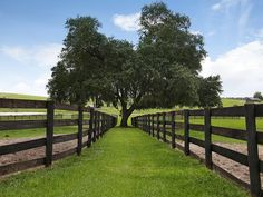 Equestrian facility in Dade City, Florida - fencing