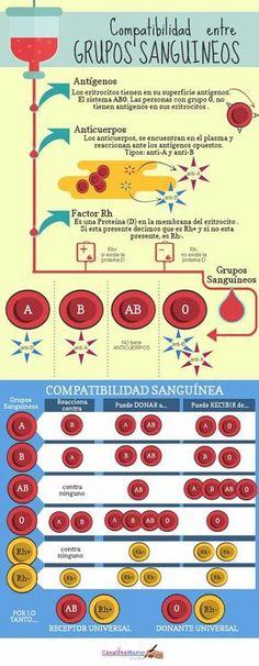 Los grupos sanguíneos. ¿Cuantos tipos de sangre existen? #infografias #salud #sangre
