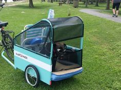 COOL dog bike trailer pupRUNNER