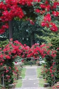 Gratitude to @CAbi Clothing #CAbigirls #CAbiScoop Portland Rose Garden. Safe Travels!
