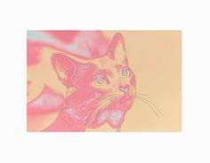 """Check out new work on my @Behance portfolio: """"Fotografía con ilustración"""" http://be.net/gallery/49813183/Fotografia-con-ilustracion"""