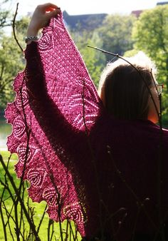 Pero's Paradox by Lotta Groeger; free pattern via http://knitty.com