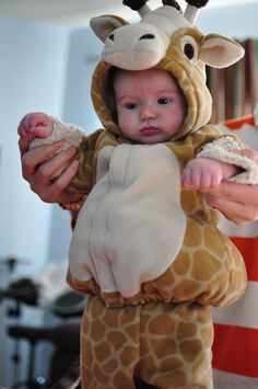 Giraffe by megseverydayindulgence #Giraffe