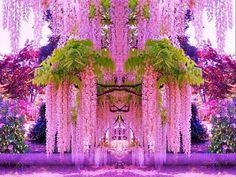 Famous Gardens of the World - Kawachi Fuji Gardens, Kitakyushu, Japan