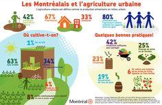 L'agriculture urbaine à Montréal.