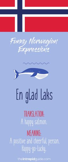 Norwegian Sayings and Idioms - Å snakke rett fra leveren Learning To Relax, Ways Of Learning, Learning Process, Student Learning, Norwegian Words, Norway Language, Norway Viking, Importance Of Education, Languages Online