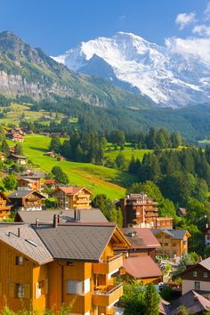 Explore the majestic Swiss Alps on your #summer travels!