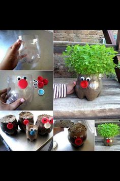Home made chia pet with the bottom of a soda bottle!