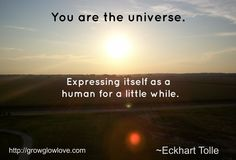 You are the universe expressing itself as a human for a little while. - Eckhart Tolle