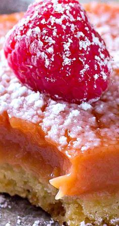 Meyer Lemon Raspberry Bars - Just a Little Bit of Bacon Fruit Recipes, Sweet Recipes, Cookie Recipes, Dessert Recipes, Bar Recipes, Cheesecake Recipes, Lemon Raspberry Bars, Raspberry Cookies, Creative Desserts