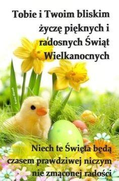 Polish Easter, Weekend Humor, Gallery Wall, Happy Birthday, Album, Bird, Pictures, Ants, Fotografia