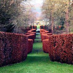 @savoygardens Chatsworth House gardens! Festive #garden #gardensoftheworld #england #englishgarden