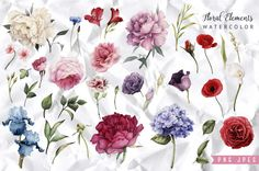 Greeting card and Watercolor flowers by ollalya on @creativemarket