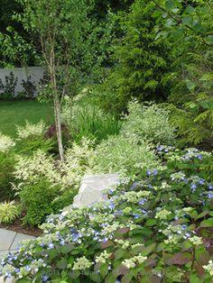 Ivory Halo Dogwood Design Ideas, Pictures, Remodel, and Decor Rain Garden, Lawn And Garden, Garden Beds, Next Garden, Dream Garden, Backyard Fences, Garden Landscaping, Ivory Halo Dogwood, Back Garden Design
