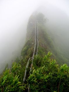Ha'iku Stairs (Stairway to Heaven) Hike is the best hike in Hawaii!  Click through to read 11 places you can't miss in Hawaii!
