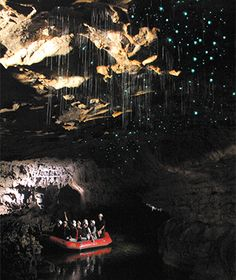 World's Coolest Underground Wonders: Waitomo Glowworm Caves, New Zealand