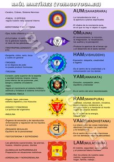 Yoga chakra chart design created for yoga 4 life client they offer resumen chakras 1 fandeluxe Gallery
