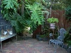 The italian courtyard garden courtyard project for Shady courtyard garden design