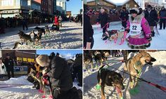 Ceremonial start for Iditarod dog race kicks off