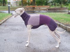 Long Whippet Sweater / NEW COLORS 2016 от SleepAndHound на Etsy