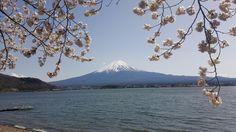 Mt Fuji Kawaguchi Lake [OC] [3264x1836]