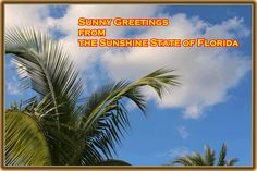 Florida Services & Information ,LLC is a database for tourist and business information and services in Florida with an online portal on the internet. Our goal is to offer a broad knowledge about Florida.