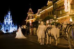 Magic Kingdom park wedding