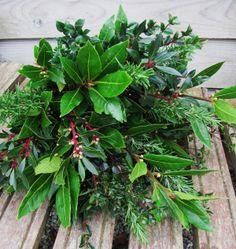 An Edible herb bouquet