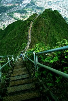 The Haʻikū Stairs, also known as the Stairway to Heaven in Oahu Island, Hawaii (by Priit Siimon).