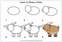 how to draw goat | How to draw goats | American Fainting Goat Organization