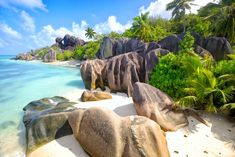 5 Beautiful Destinations in Seychelles Seychelles Island, Seychelles Beach, Les Seychelles, Seychelles Africa, Costa Costa, Photos Panoramiques, Riviera Maya, Flora Und Fauna, Puzzle Of The Day